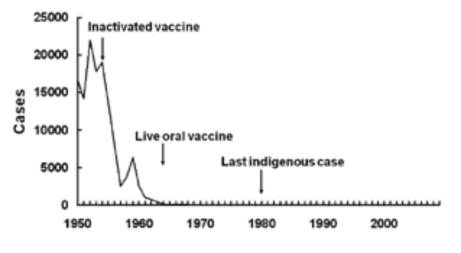 Liczba zachorowań na polio w Stanach Zjednoczonych. Pierwsza strzałka to wprowadzenie szczepionki Salka; druga -- szczepionki Sabina.